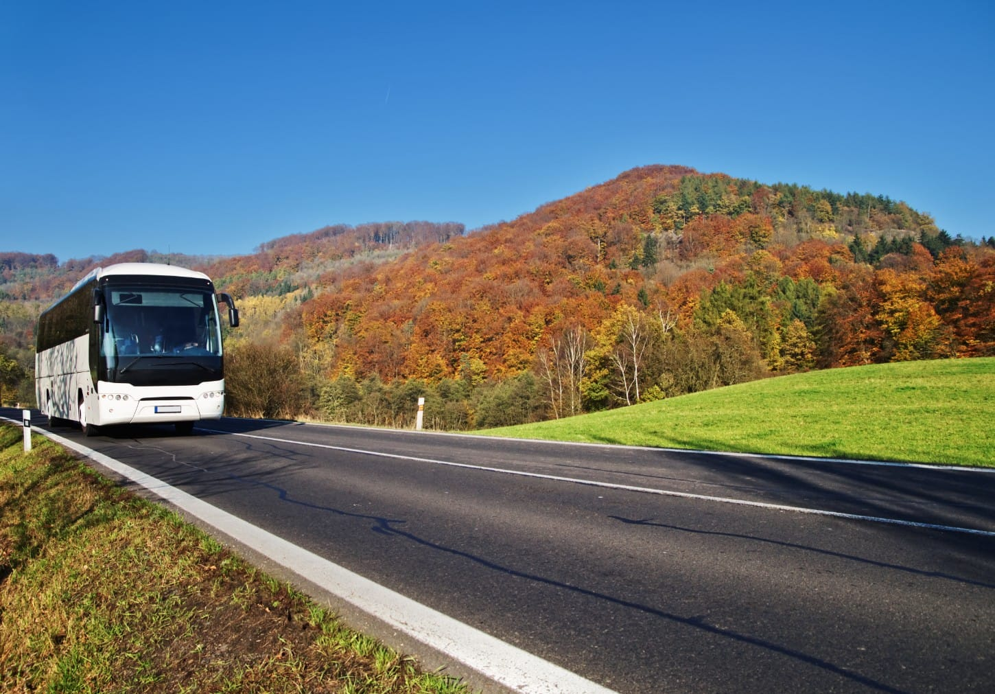 Rent a bus for a day trip